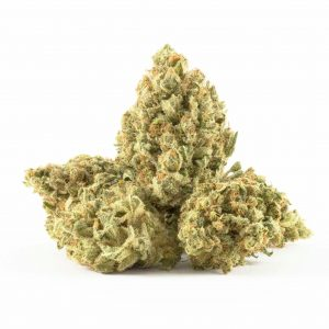 Buy Silver Haze Marijuana Strain